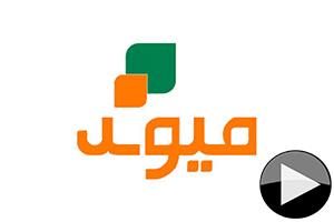 Maiwand TV